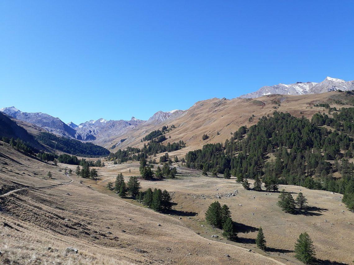 Vallon du Lauzannier, Parc du Mercantour, Alpes de Haute Provence